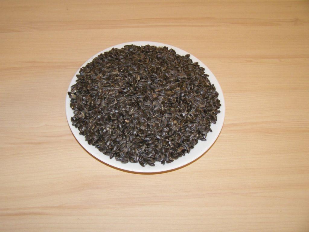 Slunečnice černá 1kg SIERA - Slunečnice